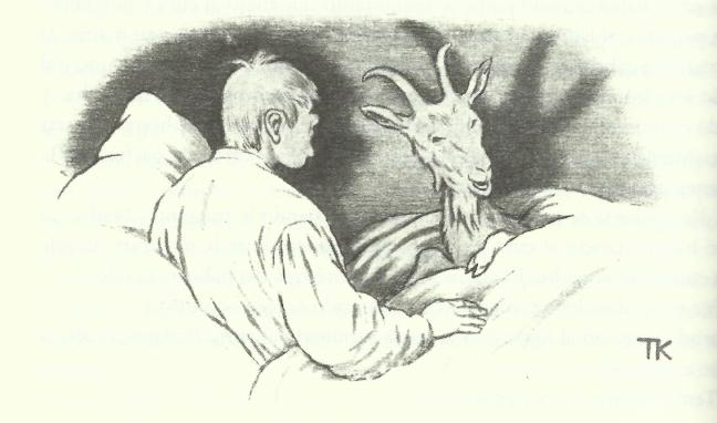 cuentos-ceniciento-y-cabra